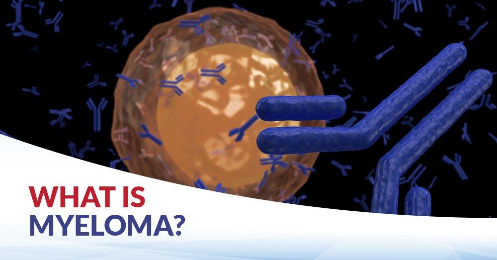 What is Myeloma, Myeloma, Multiple Myeloma